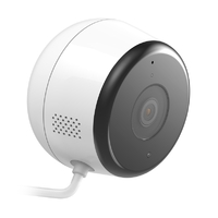 D-Link DCS-8600LH, Full HD Outdoor Wi-Fi Camera, 1 Year Warranty
